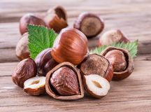 Hazelnuts and hazelnut leaves on the wooden table. Royalty Free Stock Photo