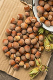 Hazelnuts. On a paper background Royalty Free Stock Photos