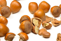 Hazelnuts healthy snack Stock Image