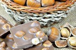 Hazelnuts i czekolada Obraz Royalty Free