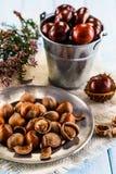 Hazelnuts i kasztany Zdjęcie Royalty Free