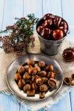 Hazelnuts i kasztany Obraz Royalty Free