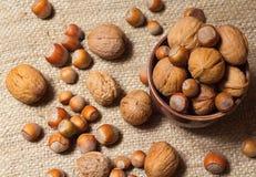 Hazelnuts i orzech włoski Fotografia Stock