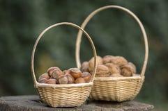 Hazelnuts i orzechy włoscy w ciężkich skorupach, dwa stosu w dwa małych łozinowych koszach na drewnianym fiszorku Fotografia Stock