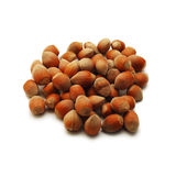 Hazelnuts isolated Stock Photography