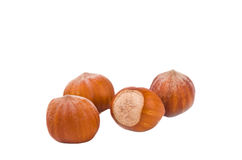 Hazelnuts isolated Royalty Free Stock Photography