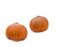Hazelnuts isolated Stock Image