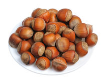 Hazelnuts, isolated Royalty Free Stock Image