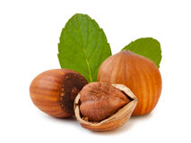 Hazelnuts isolated Stock Photos