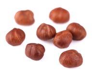 Hazelnuts isolated on white. Royalty Free Stock Photography