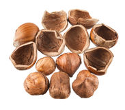 Hazelnuts isolated Royalty Free Stock Photo
