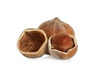 Hazelnuts isolated on a white Royalty Free Stock Image