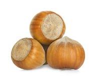 Hazelnuts isolated on a white Royalty Free Stock Photos