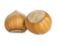 Hazelnuts isolated on a white Stock Images