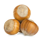 Hazelnuts isolated on a white Stock Photography