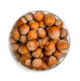 Hazelnuts isolated Royalty Free Stock Image