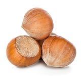 Hazelnuts isolated on white Stock Image