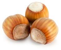 Hazelnuts isolated on the white background Royalty Free Stock Photo