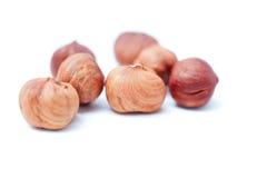 Hazelnuts isolated on white background Stock Images