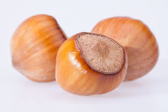 Hazelnuts isolated on white background close up Royalty Free Stock Photo