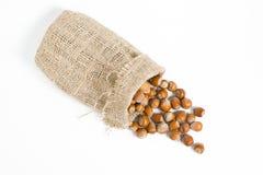 Hazelnuts isolated on white background. Macro image Royalty Free Stock Photography