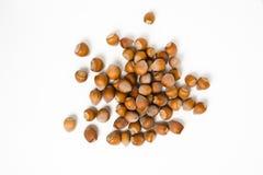 Hazelnuts isolated on white background. Macro image Stock Photography