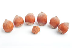 Hazelnuts and kernel Royalty Free Stock Photography