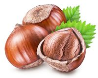 Hazelnuts, kernel of hazelnut and green leaves. Clipping path. stock image