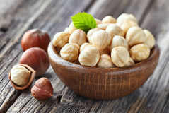 Hazelnuts kernel Stock Photography