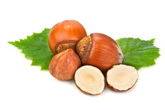 Hazelnuts and leaf Royalty Free Stock Images