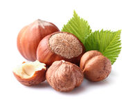 Hazelnuts with leaf. Dried hazelnuts with leaves in closeup Royalty Free Stock Photos