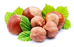 Hazelnuts  with leaf on white background Stock Photography