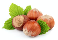 Hazelnuts with leafs. On white closeup Stock Photography
