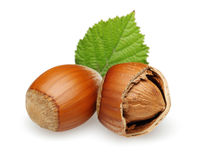Hazelnuts and leaves Royalty Free Stock Photo