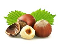 Hazelnuts with leaves isolated on white Royalty Free Stock Images