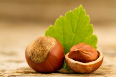hazelnuts with leaves on old wooden background. Stock Photo