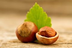 hazelnuts with leaves on old wooden background. Stock Photos