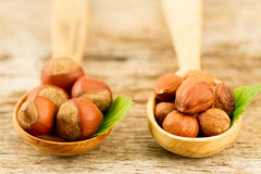 hazelnuts with leaves on old wooden background. Stock Photography