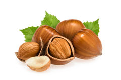 Hazelnuts with leaves  on white Stock Image