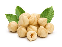 Hazelnuts with leaves Royalty Free Stock Photography