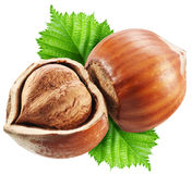 Hazelnuts with leaves on a white background. Stock Photo