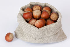 Hazelnuts in the linen bag Stock Photos
