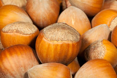 Hazelnuts macro Stock Photos