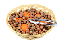 Hazelnuts and mandarins in the basket Stock Photography