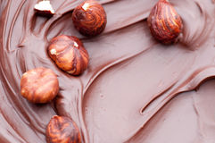 Hazelnuts in Melted Chocolate Royalty Free Stock Images