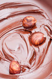 Hazelnuts in Melted Chocolate Stock Photography