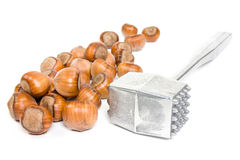 Hazelnuts and metal hammer Royalty Free Stock Image
