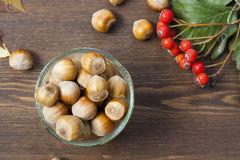 Hazelnuts, mountain ash, red and yellow autumn leaves on a wooden background Royalty Free Stock Photo