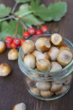 Hazelnuts, mountain ash, red and yellow autumn leaves on a wooden background Stock Photo
