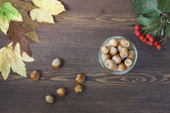 Hazelnuts, mountain ash, red and yellow autumn leaves on a wooden background Stock Image
